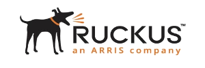 ruckuswireless